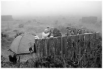 Campsite in typical fog, San Miguel Island. Channel Islands National Park ( black and white)