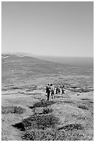 Hiking across  island to Point Bennett, San Miguel Island. Channel Islands National Park ( black and white)
