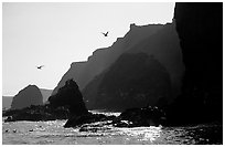 Steep cliffs, East Anacapa. Channel Islands National Park ( black and white)