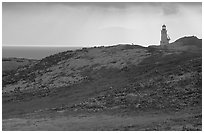 Lighthouse, East Anacapa Island. Channel Islands National Park ( black and white)
