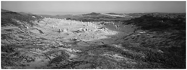 Sandy basin with petrified stumps, San Miguel Island. Channel Islands National Park (Panoramic black and white)