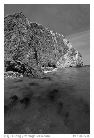 Kelp and cliff, Scorpion Anchorage, Santa Cruz Island. Channel Islands National Park (black and white)