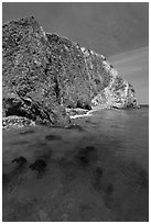 Kelp and cliff, Scorpion Anchorage, Santa Cruz Island. Channel Islands National Park, California, USA. (black and white)