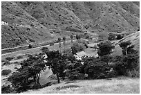 Scorpion Ranch in Scorpion Canyon, Santa Cruz Island. Channel Islands National Park ( black and white)