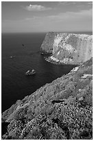 North Bluff, Santa Cruz Island. Channel Islands National Park ( black and white)
