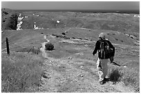Hiker on trail in the spring, Santa Cruz Island. Channel Islands National Park ( black and white)