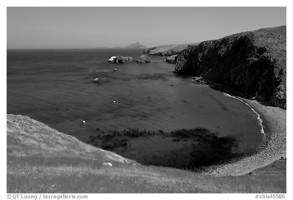 Aquamarine waters and kelp in bay, Scorpion Anchorage, Santa Cruz Island. Channel Islands National Park (black and white)