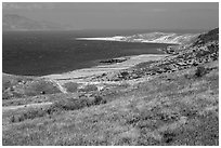 View over Skunk Point from marine terrace, Santa Rosa Island. Channel Islands National Park ( black and white)