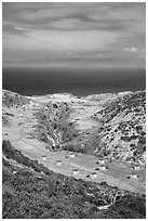 Water Canyon campground from above, Santa Rosa Island. Channel Islands National Park ( black and white)