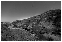 Cherry Canyon at night, Santa Rosa Island. Channel Islands National Park ( black and white)