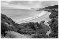 Water Canyon Beach and stream from above, Santa Rosa Island. Channel Islands National Park ( black and white)