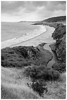 Stream and Water Canyon Beach, Santa Rosa Island. Channel Islands National Park ( black and white)