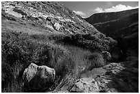 Year-round stream, Lobo Canyon, Santa Rosa Island. Channel Islands National Park ( black and white)