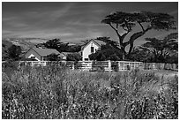Vail and Vickers Ranch house, Santa Rosa Island. Channel Islands National Park ( black and white)