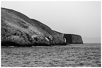 Arch Point at sunrise, Santa Barbara Island. Channel Islands National Park ( black and white)