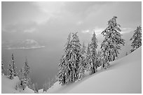 Snow-covered trees and misty lake at sunset. Crater Lake National Park ( black and white)