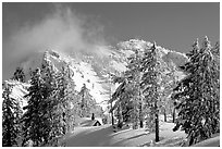 Trees, cabin, and Mt Garfield in winter. Crater Lake National Park ( black and white)
