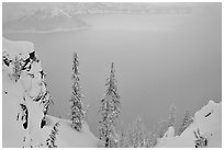Trees and mistly lake in winter. Crater Lake National Park ( black and white)