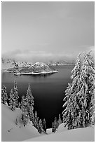 Wizard Island and Lake at dusk, framed by snow-covered trees. Crater Lake National Park ( black and white)
