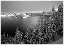 Conifers, Lake and Wizard Island, winter sunrise. Crater Lake National Park ( black and white)