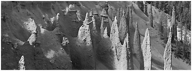Cluster of volcanic columns. Crater Lake National Park (Panoramic black and white)