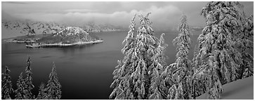 Snowy trees, lake, and Wizard Island. Crater Lake National Park (Panoramic black and white)