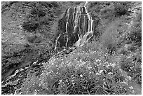 Vidae Falls and stream. Crater Lake National Park, Oregon, USA. (black and white)