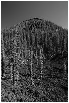 Lava rocks and cinder cone, Wizard Island. Crater Lake National Park ( black and white)