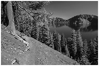 Wizard Island summit trail. Crater Lake National Park ( black and white)