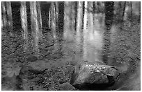 Reflections in Cedar Grove. Kings Canyon National Park ( black and white)