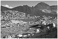 Deer, boulders, alpine lake, and mountains, Dusy Basin. Kings Canyon National Park, California, USA. (black and white)