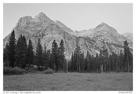 Langille Peak from Big Pete Meadow at dawn, Le Conte Canyon. Kings Canyon National Park, California, USA.