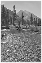 Middle Fork of  Kings River, Le Conte Canyon. Kings Canyon National Park ( black and white)