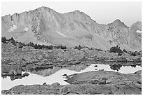 Mountains reflected in calm alpine lake at dawn, Dusy Basin. Kings Canyon National Park, California, USA. (black and white)