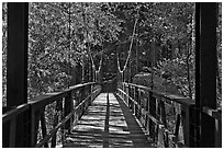 Suspension footbridge to Zumwalt Meadow. Kings Canyon National Park, California, USA. (black and white)