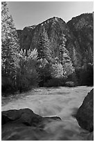 Granite River below Roaring River Falls. Kings Canyon National Park, California, USA. (black and white)