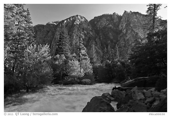 Rushing river and trees, and cliff in spring. Kings Canyon National Park (black and white)