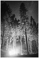 Fire amongst the sequoias, and starry sky. Kings Canyon National Park, California, USA. (black and white)