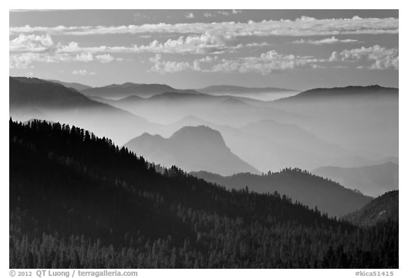 Distant sequoia forest and ridges. Kings Canyon National Park (black and white)