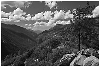 Canyon of the Kings River from Cedar Grove Overlook. Kings Canyon National Park ( black and white)