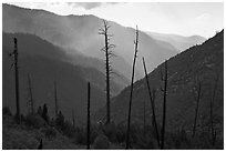 Backlit South Forks of the Kings River canyon. Kings Canyon National Park ( black and white)