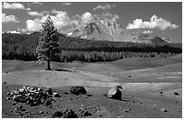 Painted dunes, pine tree, and Lassen Peak. Lassen Volcanic National Park, California, USA. (black and white)