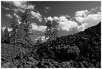 Pines on Fantastic lava beds. Lassen Volcanic National Park, California, USA. (black and white)