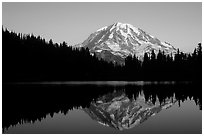 Mt Rainier with perfect reflection in Eunice Lake at sunset. Mount Rainier National Park, Washington, USA. (black and white)