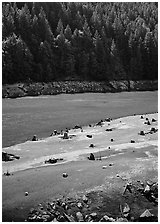 Tree stumps and river, North Cascades National Park Service Complex.  ( black and white)