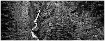 Waterfall in gorge surrounded by forest. North Cascades National Park (Panoramic black and white)
