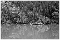 Forest reflected in turquoise waters, Gorge Lake, North Cascades National Park Service Complex.  ( black and white)