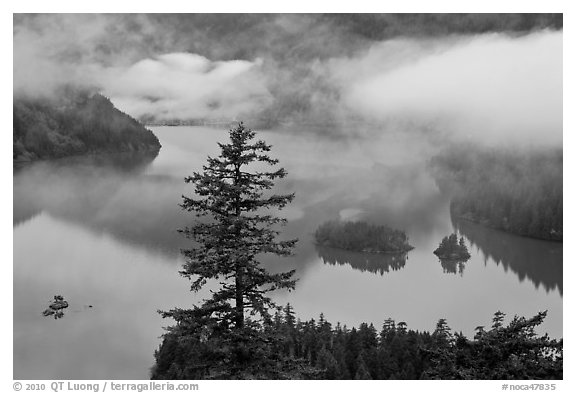 Fog hanging above Diablo Lake, North Cascades National Park Service Complex.  (black and white)
