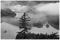 Fog hanging above Diablo Lake, North Cascades National Park Service Complex.  ( black and white)