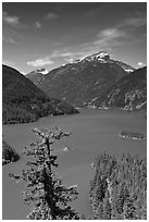 Colonial Peak and Pyramid Peak above Diablo Lake, summer morning,  North Cascades National Park Service Complex.  ( black and white)